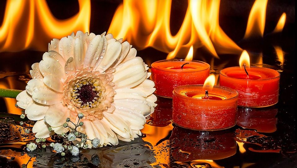 cremation services in Daytona, FL